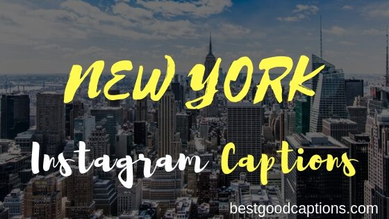 50+ Cute Funny New York Captions for Instagram – NYC Quotes