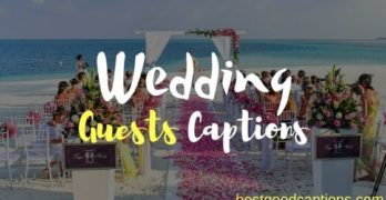 Wedding Guests captions