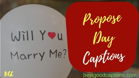 Propose Day Captions for Instagram