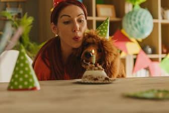 Dog Birthday Captions