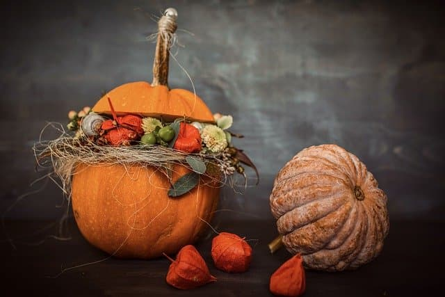 Cute Thanksgiving Captions About Gratitude