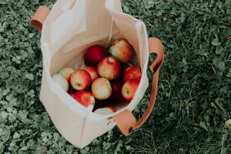 Apple Picking Captions For Couples