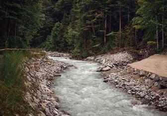 Short River Captions for Instagram
