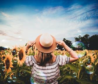Sunflower Couple Captions for Instagram